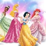 Disney Princess Dress Store