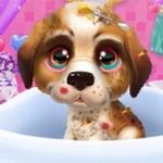 Elsa's Pet Hospital