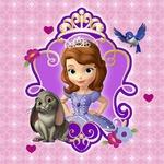 Princess Sofia Busy Clinic